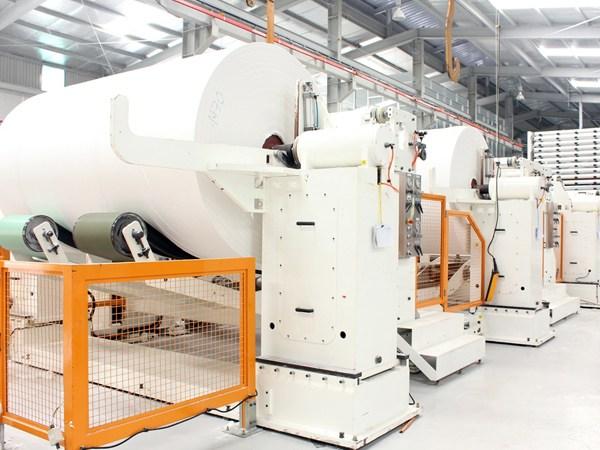 Cơ sở sản xuất giấy vệ sinh